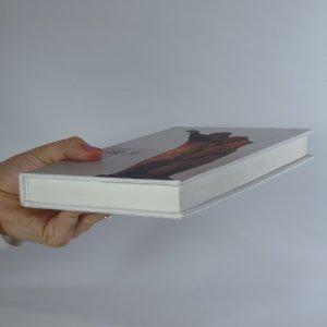 antikvární kniha Eseje, 1996