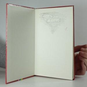 antikvární kniha Divoké prázdniny, 1992