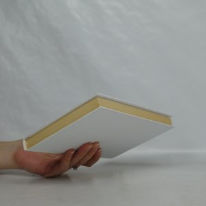 antikvární kniha Pod horou Javořicí (pět povídek a jeden obrázek z nedávné doby), 2001