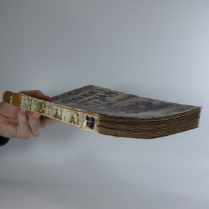 antikvární kniha Marnost bojů proti Rukopisům, 1933