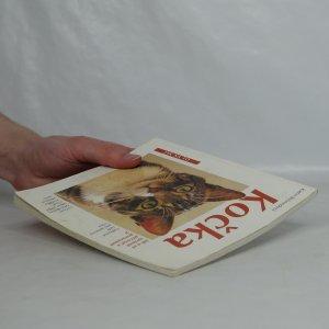 antikvární kniha Kočka : správná péče : rady odborníků ke správnému chovu, 1998