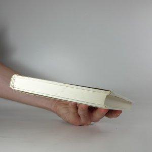 antikvární kniha Rozhodná chvíle, 1989