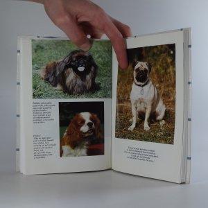 antikvární kniha Pejsek do paneláku, 1993