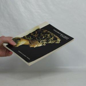 antikvární kniha Parléřovské umění z Porýní. Katalog výstavy. Národní galerie v Praze, Jiřský klášter, 1983