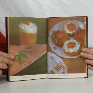 antikvární kniha Dietní kuchařka pro zaměstnanou ženu, 1981
