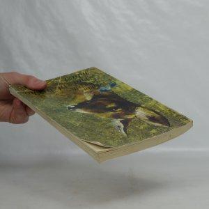 antikvární kniha Srna z olšového mlází, 1983