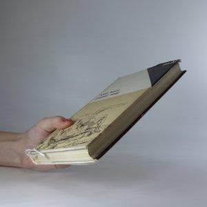 antikvární kniha Kéž hoří popel můj. Z poezie evropského baroka, 1967