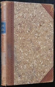 náhled knihy - Die Nilbraut