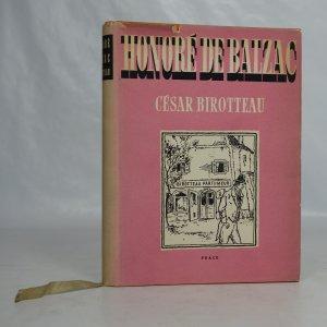náhled knihy - Příběh o velikosti a pádu Césara Birotteaua