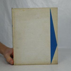 náhled knihy - Setkání v Jugoslávii
