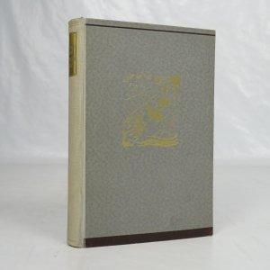 náhled knihy - Prosťáček boží