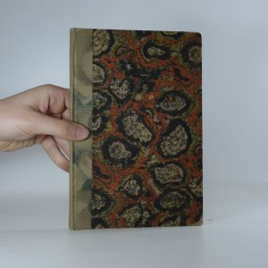 náhled knihy - Aluminiumguss in Sand und Kokille