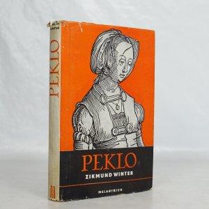 náhled knihy - Peklo a jiné pražské obrázky