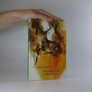 náhled knihy - Dvanácterák z Modravy