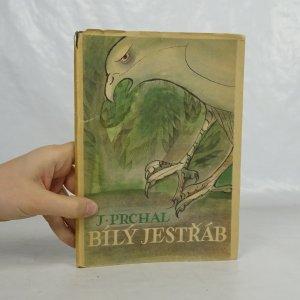 náhled knihy - Bílý jestřáb