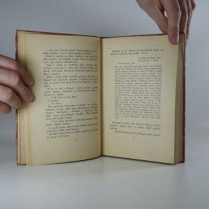 antikvární kniha Chemin des Dames v plamenech , 1929