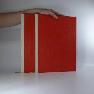 náhled knihy - Život a dílo Jaroslava Čermáka