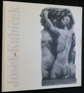 náhled knihy - Josef Kubíček