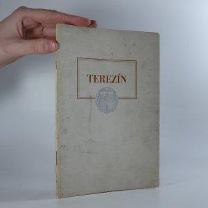 náhled knihy - Terezín. Třicet let školy a města. Život v ghettu