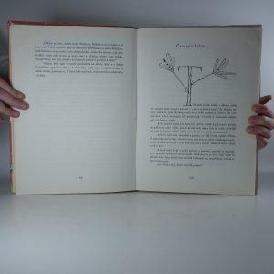 antikvární kniha Čarovný svět, 1982