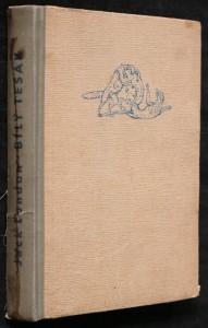 náhled knihy - Román