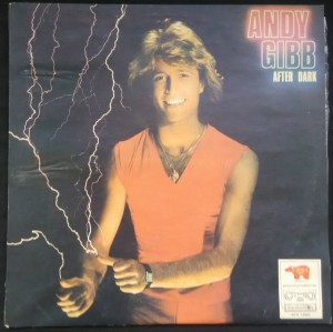 náhled knihy - Andy Gibb: After Dark