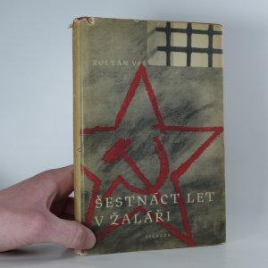 náhled knihy - Šestnáct let v žaláři
