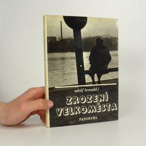 náhled knihy - Zrození velkoměsta