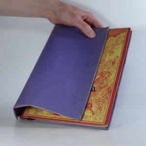 náhled knihy - Hvězda jihu