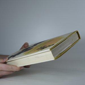 antikvární kniha Chlapec ze Starého lesa, 1978