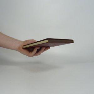 antikvární kniha Kacíř a spol., 1926