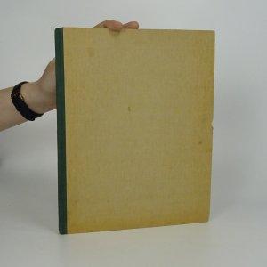náhled knihy - Deník Honzy Vejvody. Uličníkův deník
