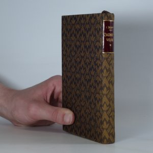 antikvární kniha Žasnoucí voják, 1924