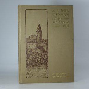 náhled knihy - Obrazy z dějin jihočeského umění