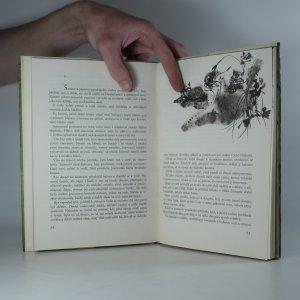 antikvární kniha Šelmy hledají domov, 1972