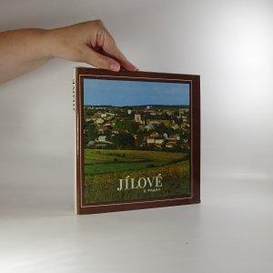 náhled knihy - Jílové u Prahy