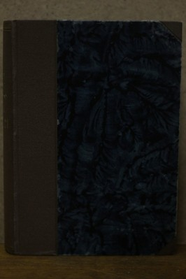náhled knihy - Dva umělci : Román. I.-II