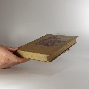antikvární kniha Stopař. The Pathfinder, 1929