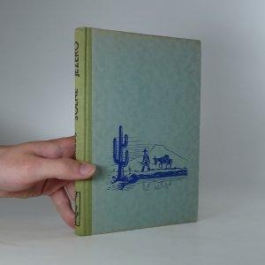 náhled knihy - Solné jezero
