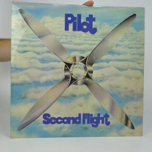 náhled knihy - Pilot: Second Flight