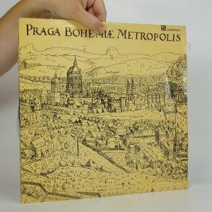 náhled knihy - Jaromír Čermák, Karel Šašek, Kamil Bednář: Praga Bohemiae Metropolis