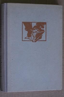 náhled knihy - Pán a spisovatel : Gordonův trust žaluje