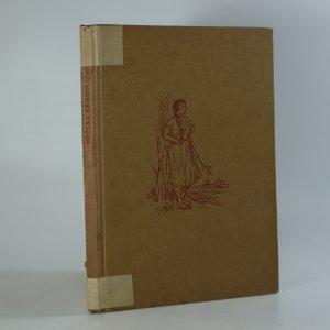 náhled knihy - Divá Bára