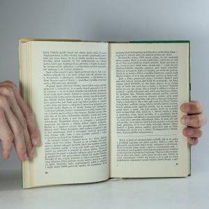 antikvární kniha Námořník na koni, 1963