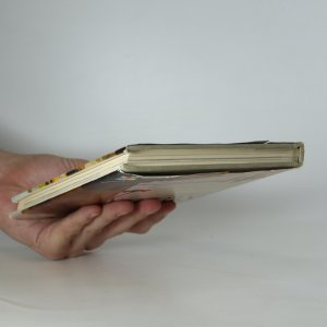 antikvární kniha Džunky a lotosy, 1982