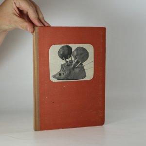 náhled knihy - Modelování z hlíny a jiných tvárlivých hmot na školách pro mládež vyžadující zvláštní péče