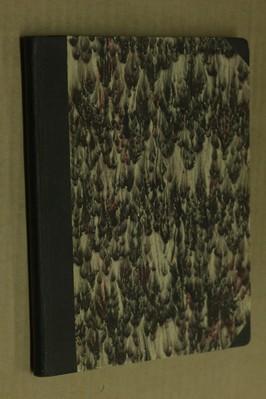 náhled knihy - Bratrstvo Modrého racka : Bratovščina sinjega galeba