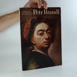 náhled knihy - Petr Brandl a jeho Nanebevzetí ve Vysokém Mýtě