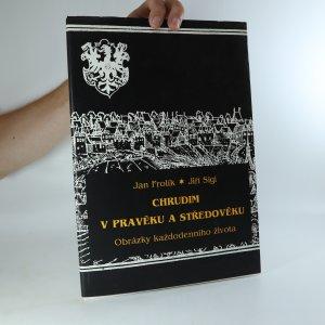 náhled knihy - Chrudim v pravěku a středověku. Obrazy každodenního života