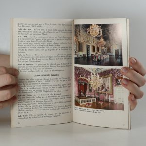 antikvární kniha Palais Pitti, neuveden